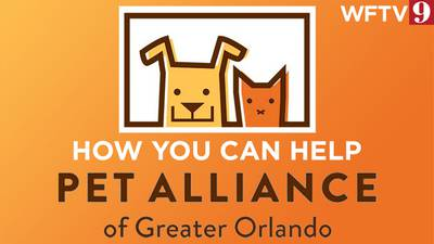 How you can help Pet Alliance of Greater Orlando following fire